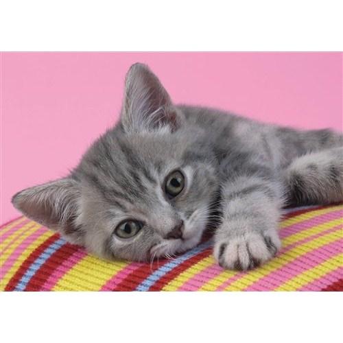 Clementoni Puzzle Grey Kitten (500 Parça)