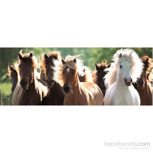 Ravensburger 1000 Parça Panorama Vahşi Atlar Puzzle