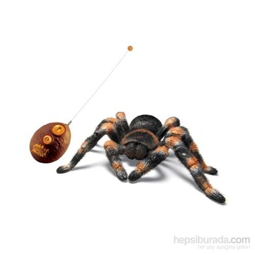Rc Tarantula Uzaktan Kumandalı Örümcek