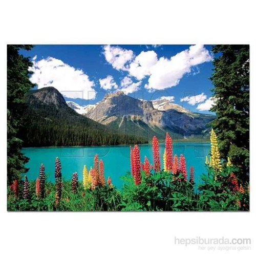 Emerald Lake And Canadian Rockies (1000 Parça)