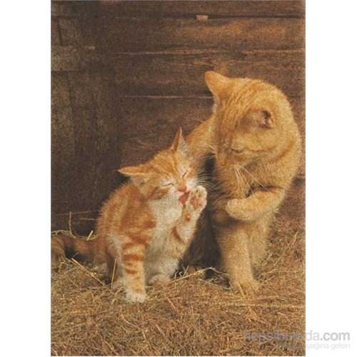 Ginger Cats (500 Parça, Mantar Puzzle)