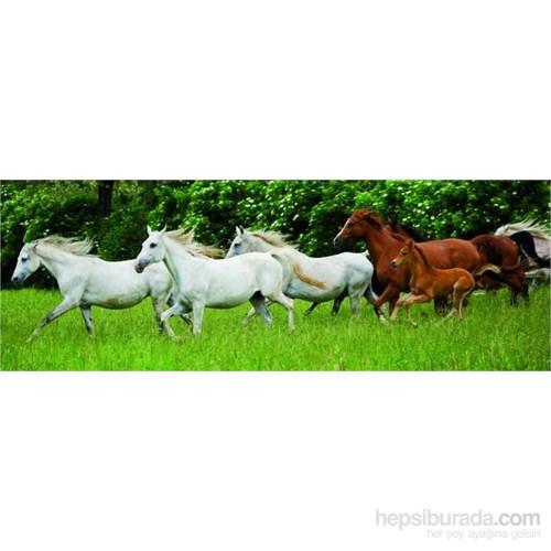 Running Horses (150 Parça, Panorama)