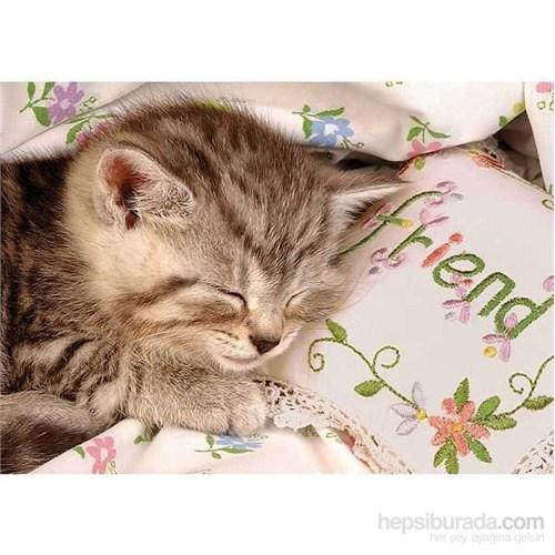 Uyuyan Kedi (1500 Parça Puzzle)