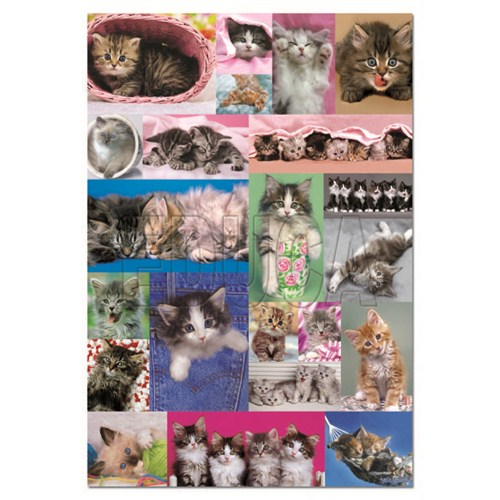 Educa Puzzle Kitten Collage (1000 Parça)