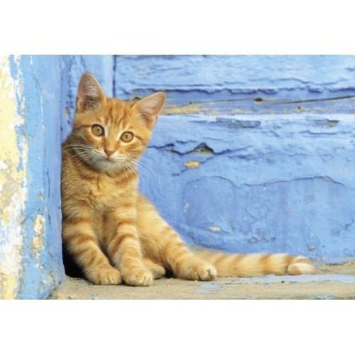 Clementoni Puzzle Ginger Cat (500 Parça)