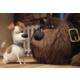 Ravensburger 2x24 Parça Çocuk Puzzle : Evcil Hayvanların Gizli Yaşamı