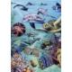 Heye 500 Parça Tropical Waters Puzzle
