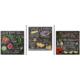 Educa Puzzle Lily Val 3x500 Parça Puzzle
