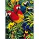Clementoni 1000 Parça 3 Boyutlu Sihirli Puzzle - Mejestic Macaws