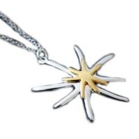Myfavori Yeni Tasarım Gümüş Kaplama Denizyıldızı Kolye Takı Sevgililer Günü Hediye