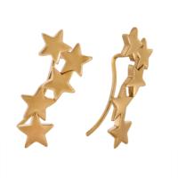 Tuğrul Kuyumculuk Yıldız Altın Küpe
