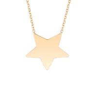 Altınsepeti Rose Yıldız Altın Kolye As1146Klr2