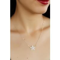 Çınar E-Ticaret Zirkon Parlak Taşlı Deniz Yıldızı Figürlü Bayan Kolye Bko1593