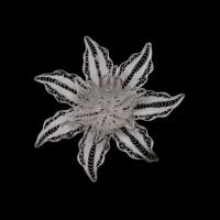 Akyüz Gümüş Deniz Yıldız İşlemeli Telkari Gümüş Broş Brs003