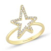 Altınbaş Yıldız Yüzük Y24653-00-6823