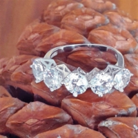 Bella Gloria Gümüş Beştaş Alyans (Ga00091) 15