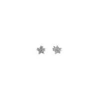 Asitantakı Zirkon Taşlı Minik Yıldız Küpe Astnkp99