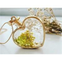 Güven Altın Yaşayan Kolyeler Kristal Cam Kurutulmuş Çiçekler Yk85