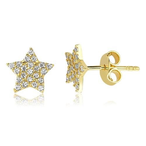Diva 14 Ayar Altın Yıldız Küpe
