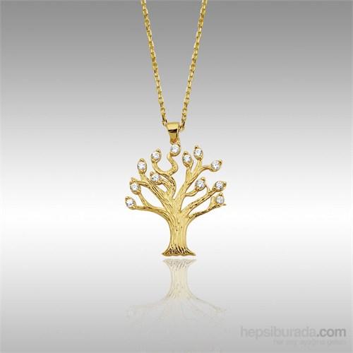 Sheamor Taşlı Ağaç Altın Kolye