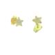 Asitantakı 14 Ayar Altın Yıldız Küpe Astnalt53