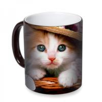 Fotografyabaskı Şapkalı Kedi Sihirli Siyah Kupa Bardak Baskı