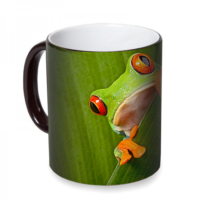 Fotografyabaskı Kurbağa Sihirli Siyah Kupa Bardak Baskı