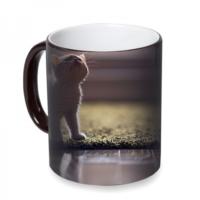 Fotografyabaskı Yavru Kedi Sihirli Siyah Kupa Bardak Baskı
