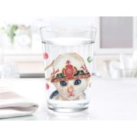 Madame Coco Fantina 3Lü Su Bardağı Takımı