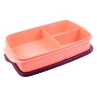 Tupperware Bölmeli Beslenme Kutusu