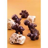 Fackelmann Dino Silikon Çikolata Kalıbı