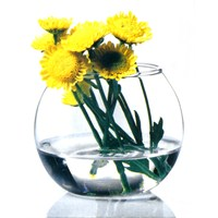Paşabahçe Flora Vazo