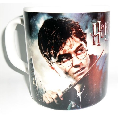 Köstebek Harry Potter Kupa