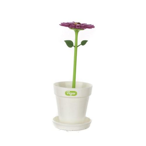 Vıgar Flower Power Diş Fırçalık Saksı