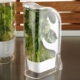 Kütahya Porselen Yeşillik Saklama Kabı