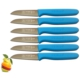 Sürmene Surbisa 061007 Meyve Bıçağı 6' Lı Set