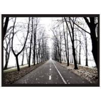 M3 Decorium Ağaçlı Yol Poster