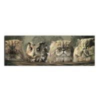 Mania Kediler Arasındaki Baykuş 30x90 cm Kanvas Saat