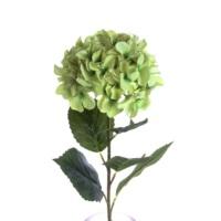 Yedifil Ortanca Yeşil YFW071M1G