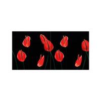 ARTİKEL Fire Flowers 2 Parça Kanvas Tablo 80x40 cm KS-535