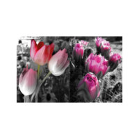 ARTİKEL Gigantic Flowers 2 Parça Kanvas Tablo 60x40 cm KS-617