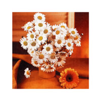 ARTİKEL Sound of Daisy 4 Parça Kanvas Tablo 70x70 cm KS-121