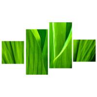 Tictac Design Yeşil 4 Parça Kanvas Tablo 104