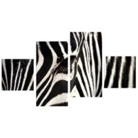 Tictac Design 4 Parça Kanvas Tablo Zebra