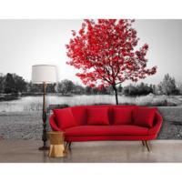 Artmodel Kızıl Ağaç Manzaralı Poster Duvar Kağıdı Pdm-60
