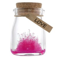 BuldumBuldum Crystal Garden - Büyüyen Kristal - Love