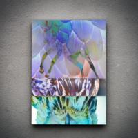 Zoodesignstudio Kanvas Tablo Eller - 60X90