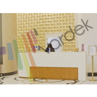 Vardek 3D Dekoratif Duvar Paneli Spline - Altın