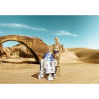 Disney Edition 8-484 Star Wars Lost Duvar Posteri