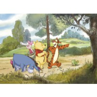 Disney Edition 4-411 Winnie Pooh Duvar Posteri